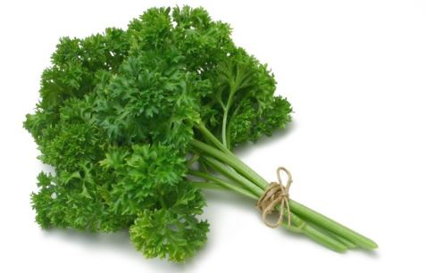 12 Benefits of Parsley You Probably Did not Know