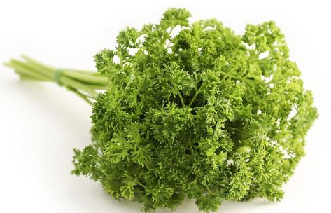 Parsley 3