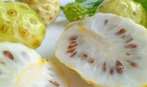 10 benefits of Noni for Your Health