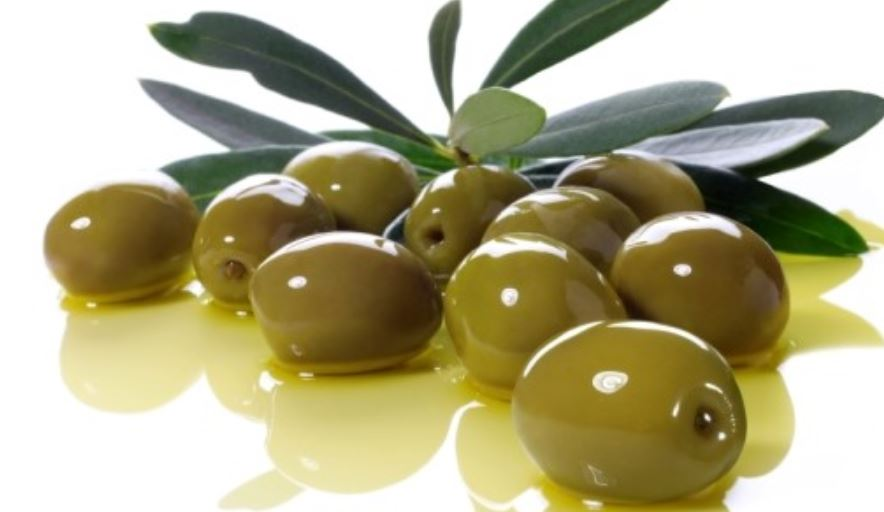 The 16 Most Common Olives Varieties