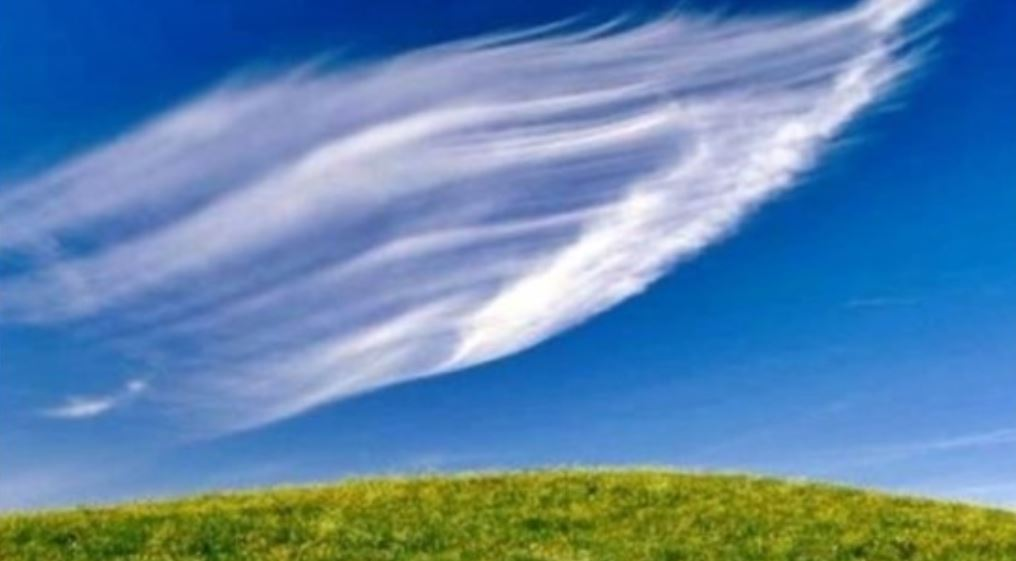 Wind Dream: Meaning and Interpretation