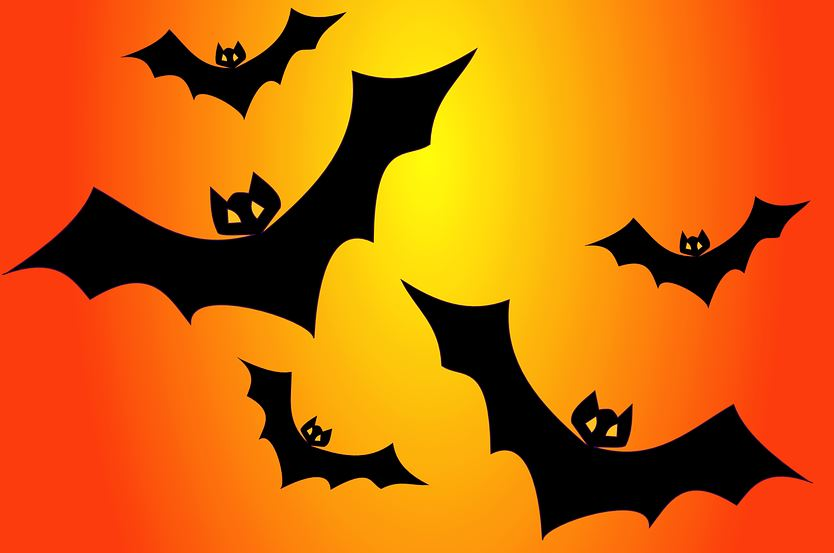 Dream about Bats: Meaning and Interpretation
