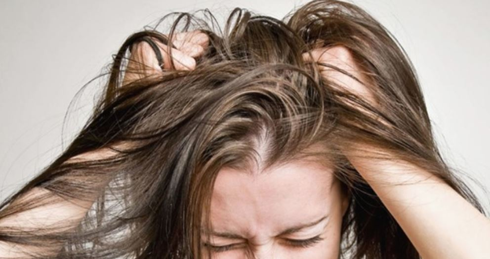 Dream About Lice: Meaning and Interpretation